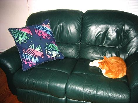 Pillow on couch in family room. Kitty wondering why mom is disturbing his sleep with flashing camera lights.